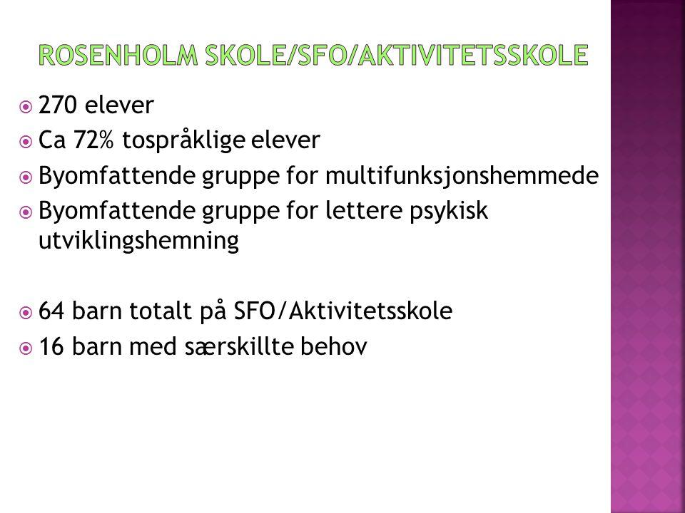 Rosenholm skole/sfo/Aktivitetsskole