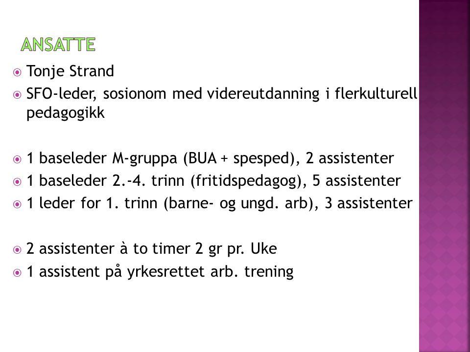 Ansatte Tonje Strand. SFO-leder, sosionom med videreutdanning i flerkulturell pedagogikk. 1 baseleder M-gruppa (BUA + spesped), 2 assistenter.