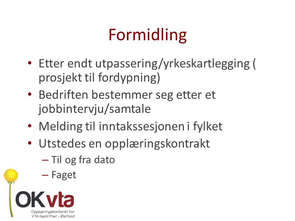 Formidling Etter endt utpassering/yrkeskartlegging ( prosjekt til fordypning) Bedriften bestemmer seg etter et jobbintervju/samtale.