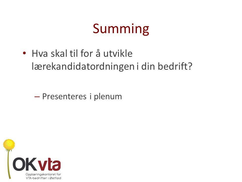 Summing Hva skal til for å utvikle lærekandidatordningen i din bedrift Presenteres i plenum