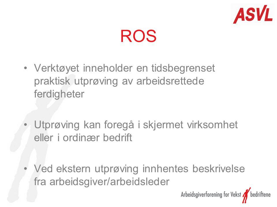 ROS Verktøyet inneholder en tidsbegrenset praktisk utprøving av arbeidsrettede ferdigheter.