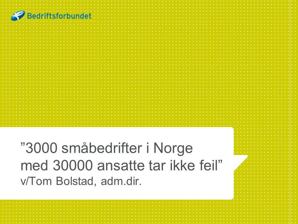 3000 småbedrifter i Norge med 30000 ansatte tar ikke feil v/Tom Bolstad, adm.dir.