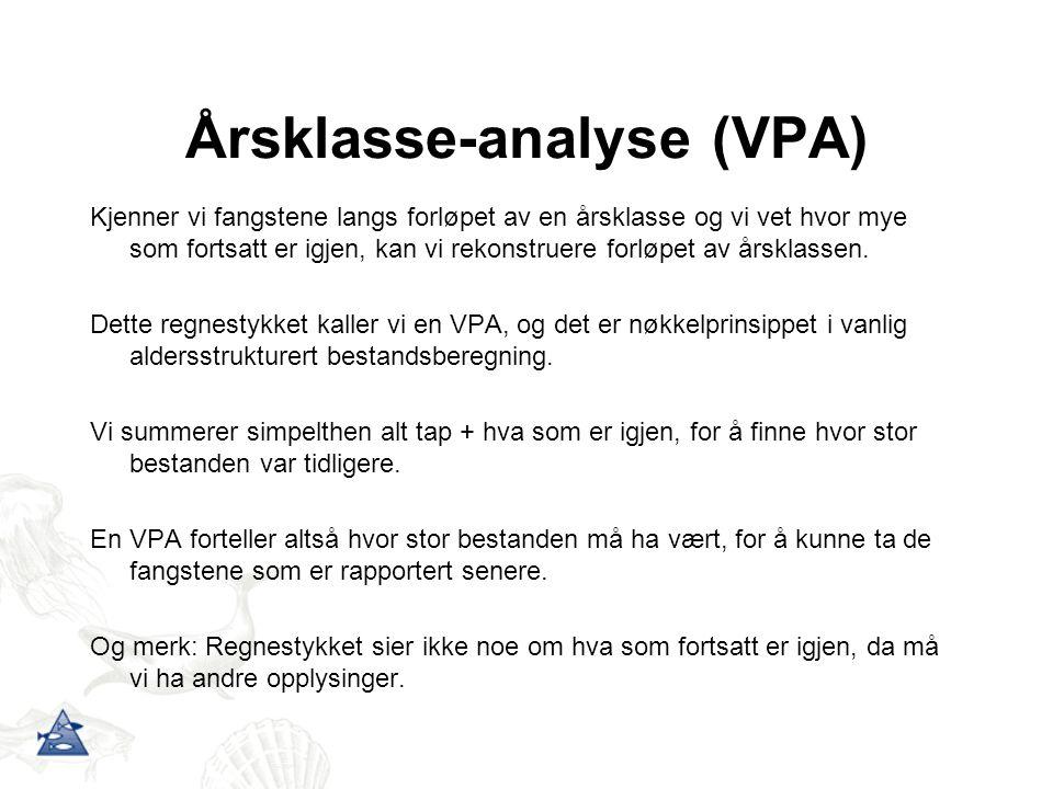 Årsklasse-analyse (VPA)