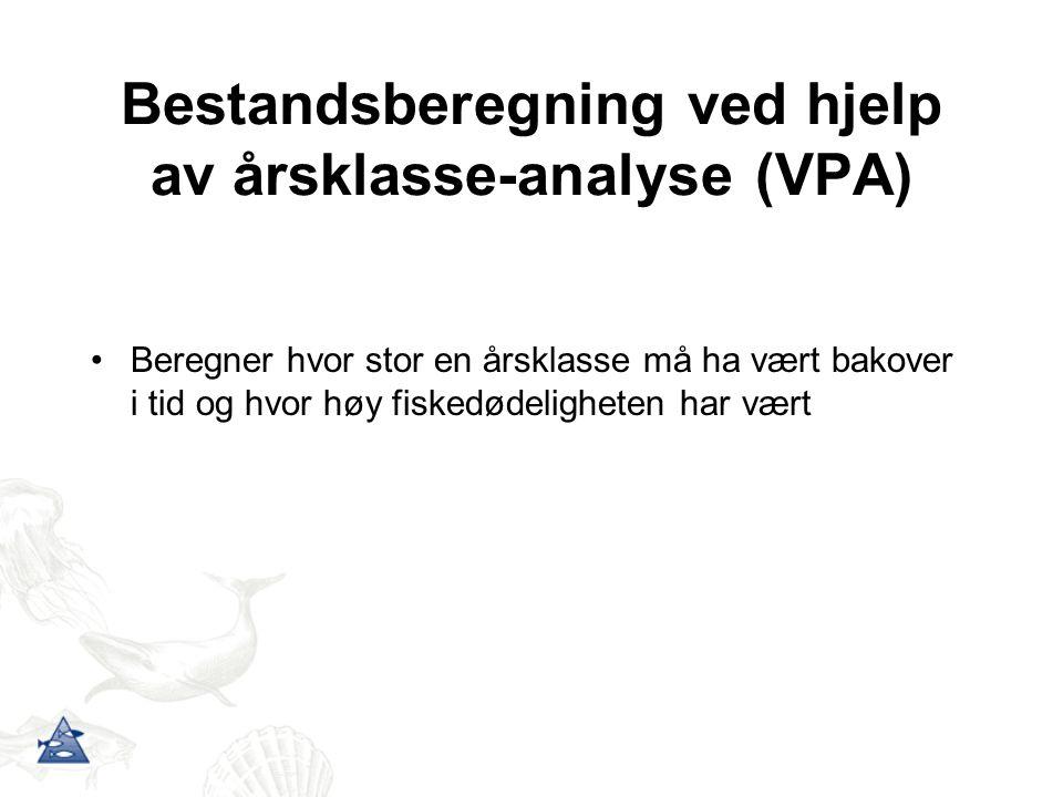 Bestandsberegning ved hjelp av årsklasse-analyse (VPA)