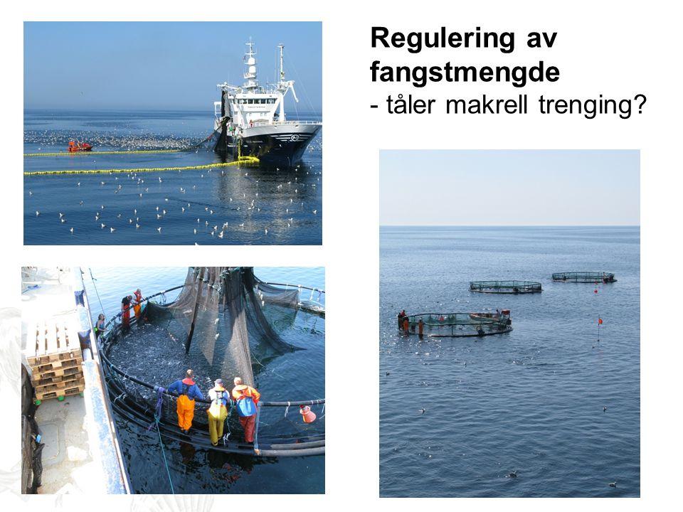 Regulering av fangstmengde