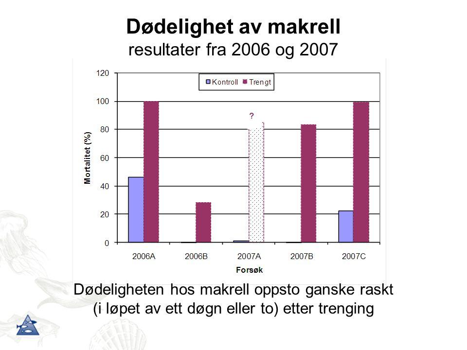 Dødelighet av makrell resultater fra 2006 og 2007