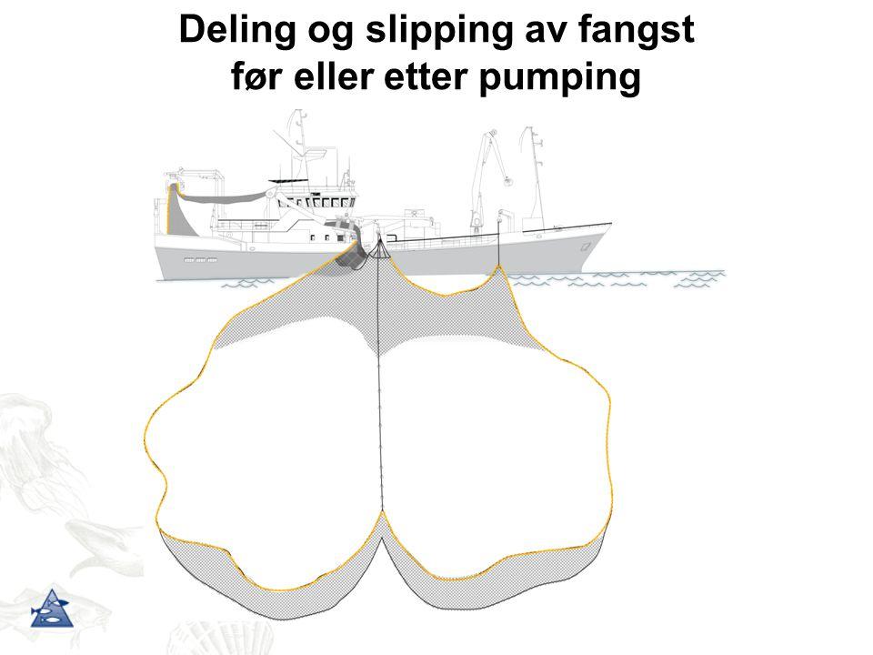 Deling og slipping av fangst før eller etter pumping