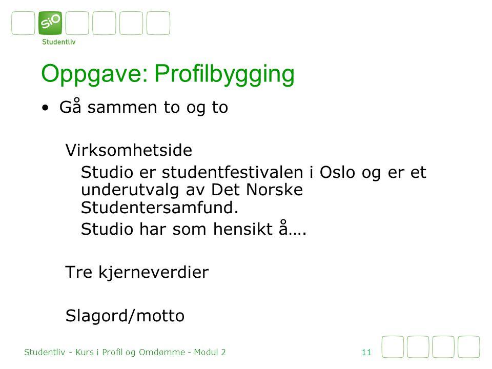 Oppgave: Profilbygging