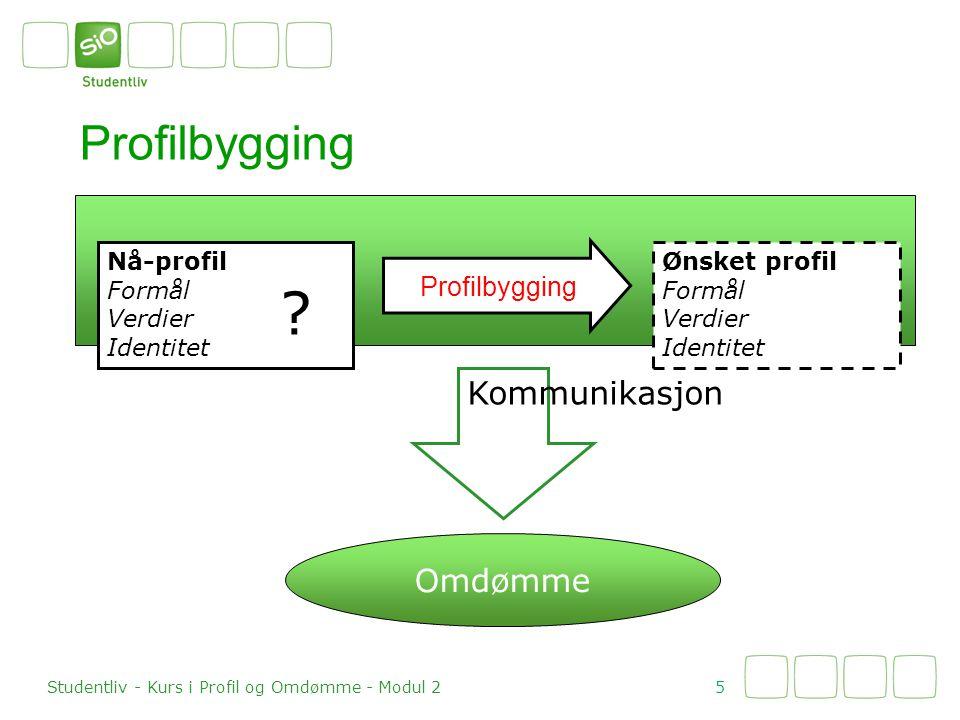 Profilbygging Kommunikasjon Omdømme Profilbygging Nå-profil Formål