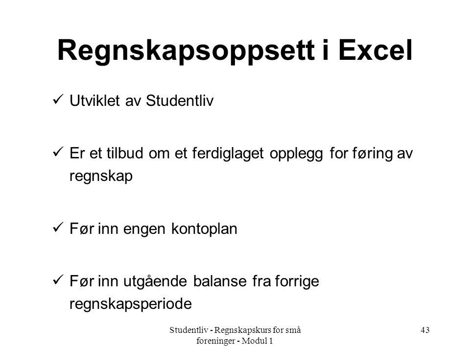 Regnskapsoppsett i Excel