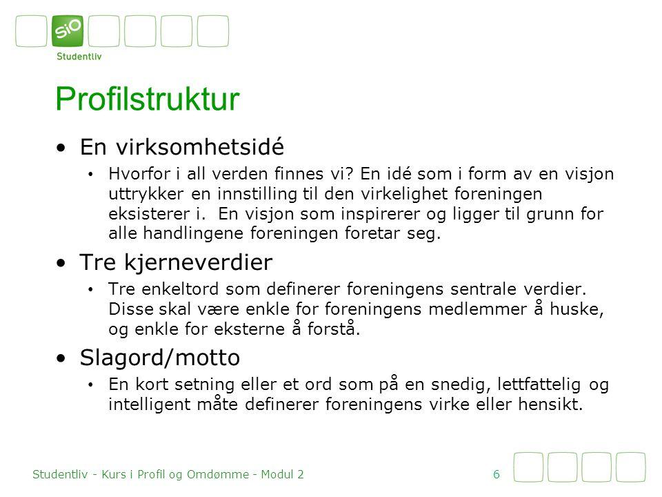 Profilstruktur En virksomhetsidé Tre kjerneverdier Slagord/motto