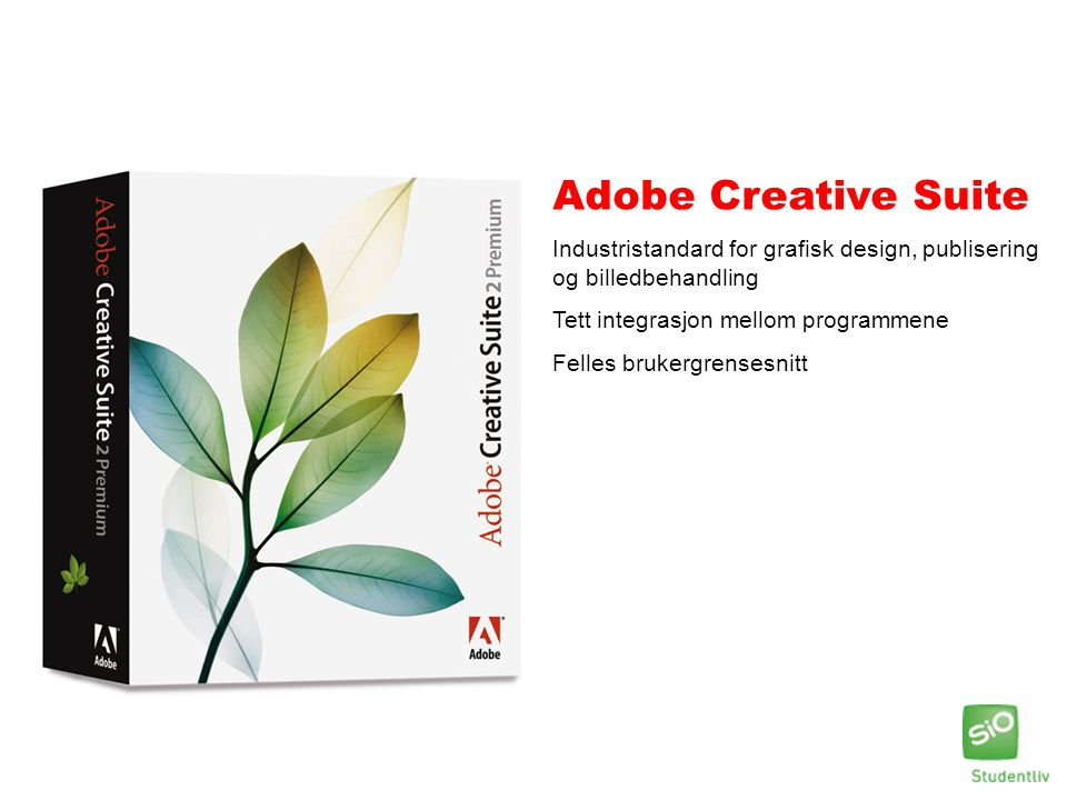 Adobe Creative Suite Industristandard for grafisk design, publisering og billedbehandling. Tett integrasjon mellom programmene.
