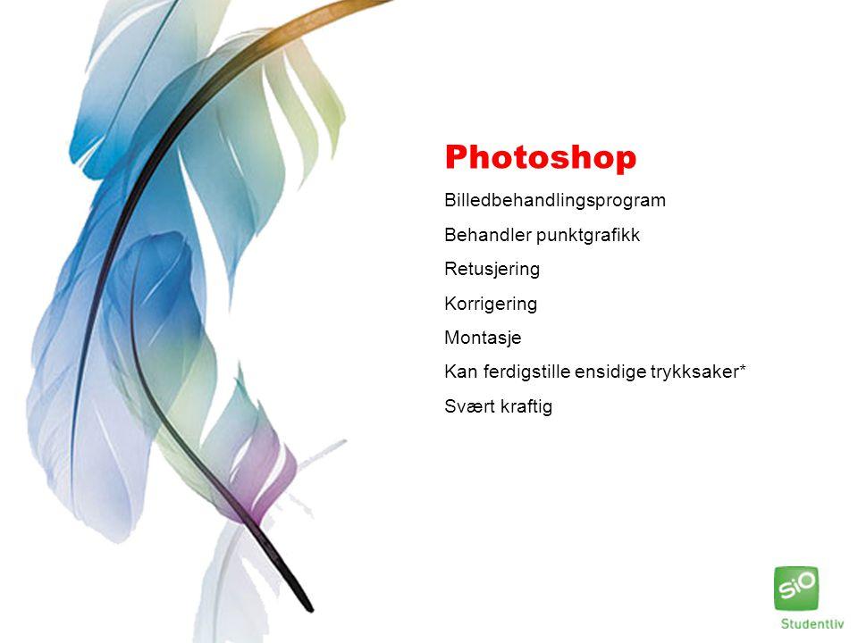 Photoshop Billedbehandlingsprogram Behandler punktgrafikk Retusjering