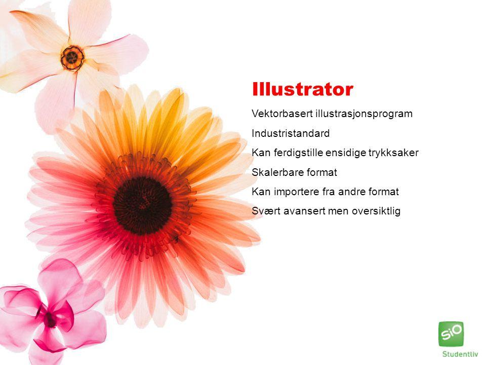 Illustrator Vektorbasert illustrasjonsprogram Industristandard