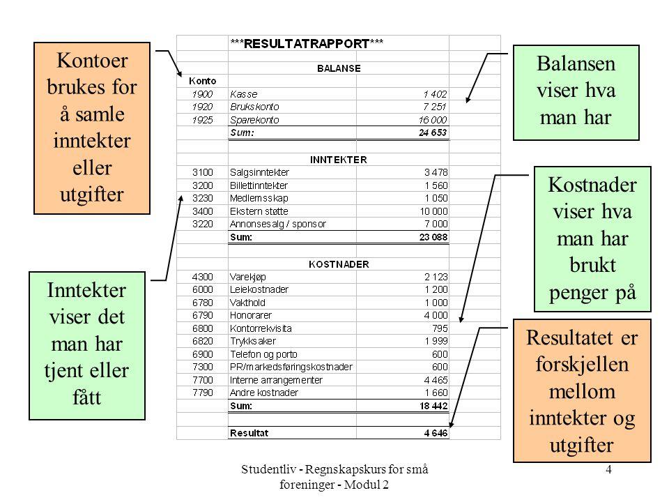Kontoer brukes for å samle inntekter eller utgifter
