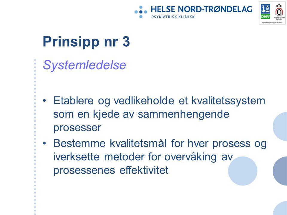 Prinsipp nr 3 Systemledelse