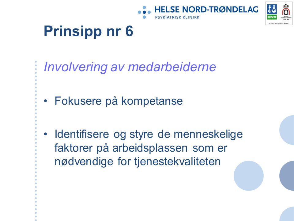Prinsipp nr 6 Involvering av medarbeiderne Fokusere på kompetanse