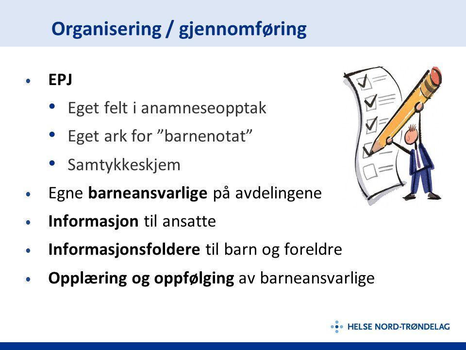 Organisering / gjennomføring