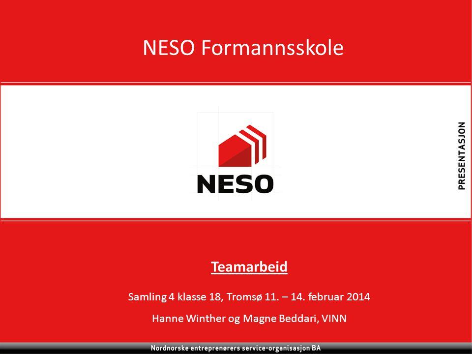 NESO Formannsskole Teamarbeid