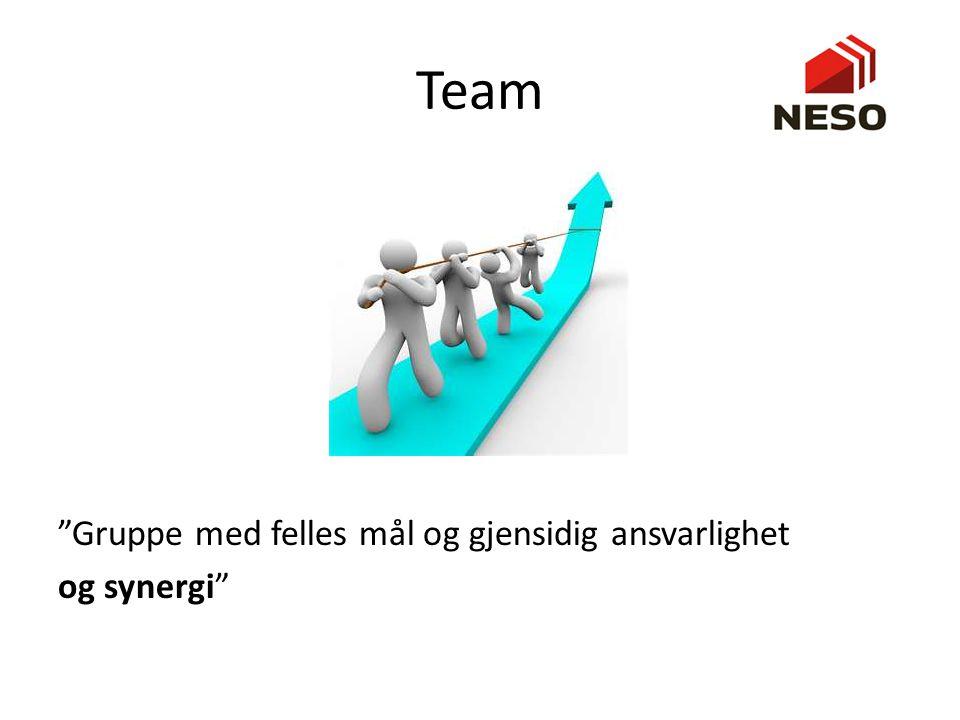 Team Gruppe med felles mål og gjensidig ansvarlighet og synergi