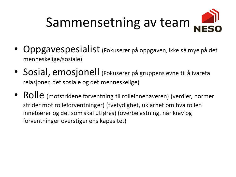 Sammensetning av team Oppgavespesialist (Fokuserer på oppgaven, ikke så mye på det menneskelige/sosiale)