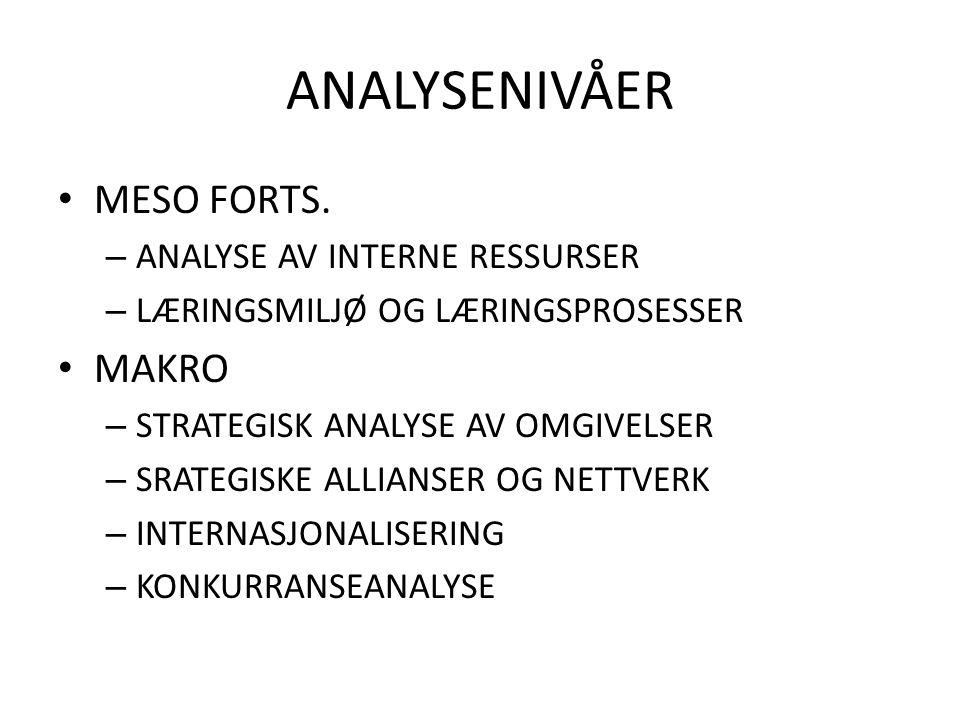 ANALYSENIVÅER MESO FORTS. MAKRO ANALYSE AV INTERNE RESSURSER