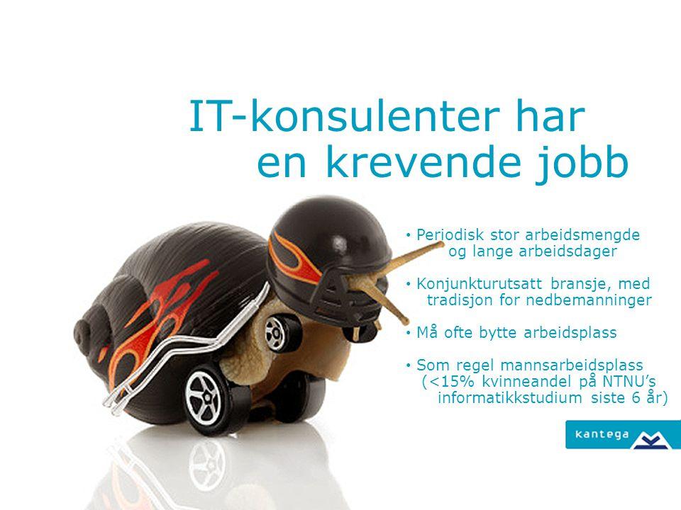 IT-konsulenter har en krevende jobb Periodisk stor arbeidsmengde