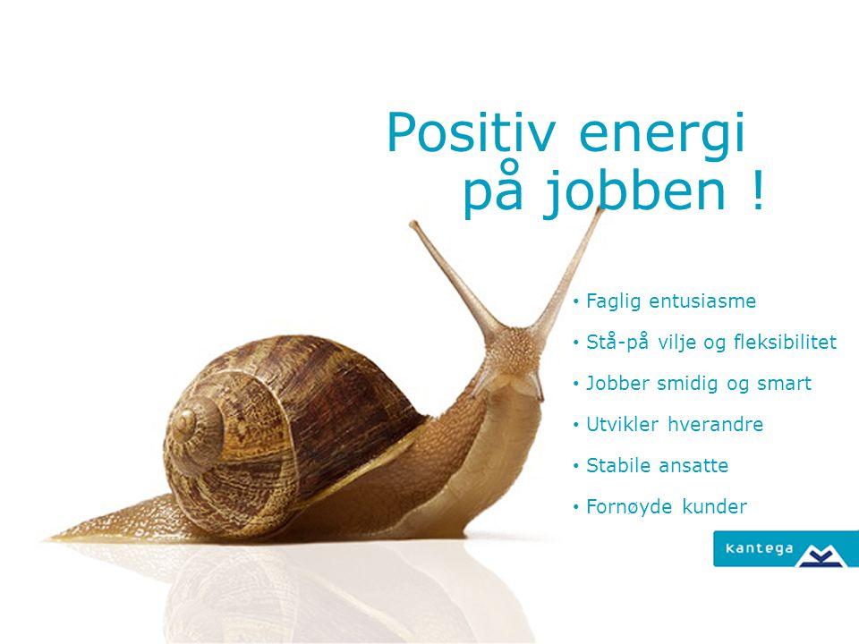 Positiv energi på jobben ! Faglig entusiasme