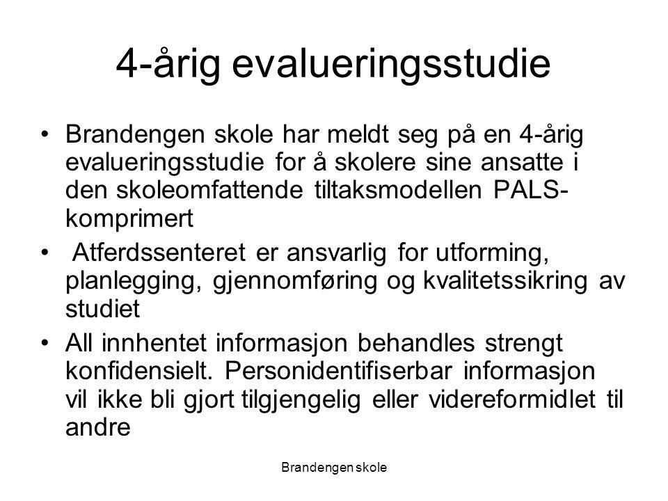 4-årig evalueringsstudie