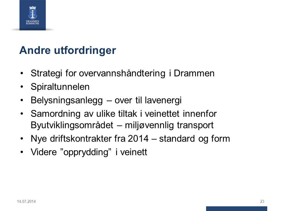 Andre utfordringer Strategi for overvannshåndtering i Drammen