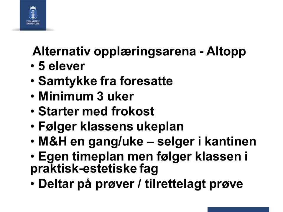 Alternativ opplæringsarena - Altopp