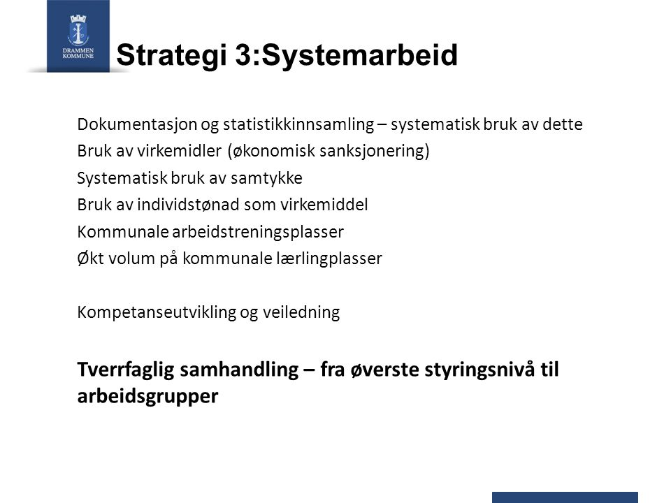 Strategi 3:Systemarbeid
