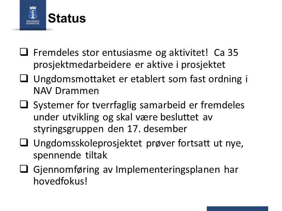 Status Fremdeles stor entusiasme og aktivitet! Ca 35 prosjektmedarbeidere er aktive i prosjektet.