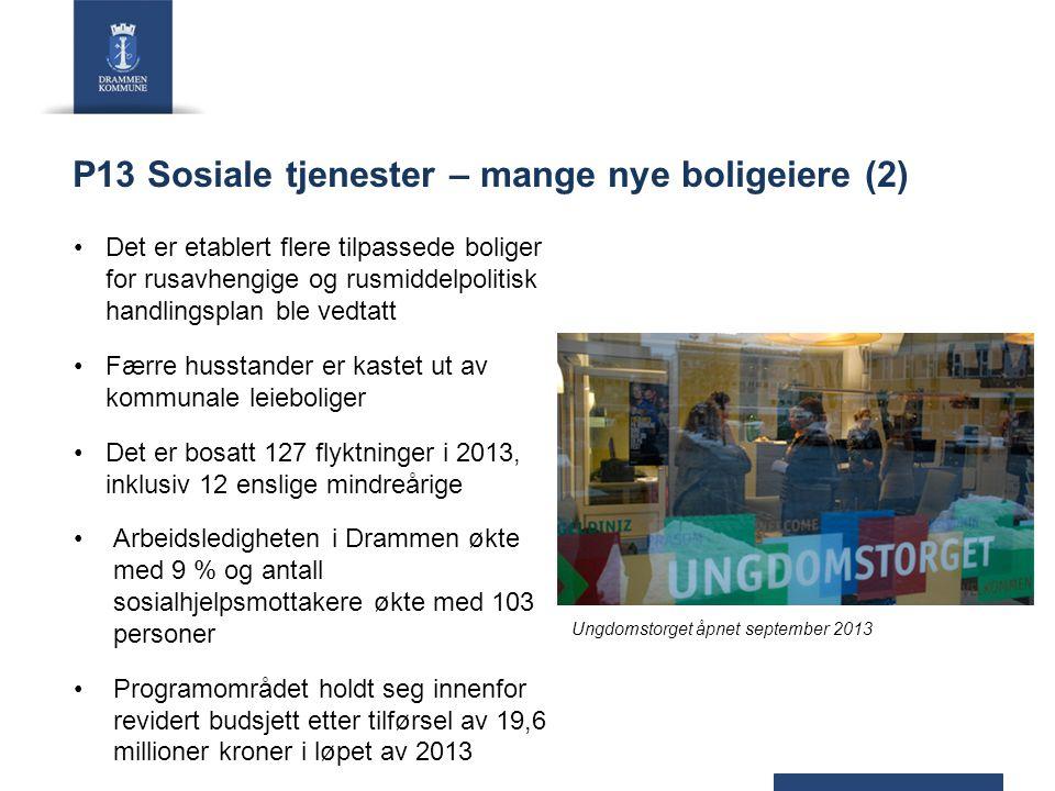 P13 Sosiale tjenester – mange nye boligeiere (2)