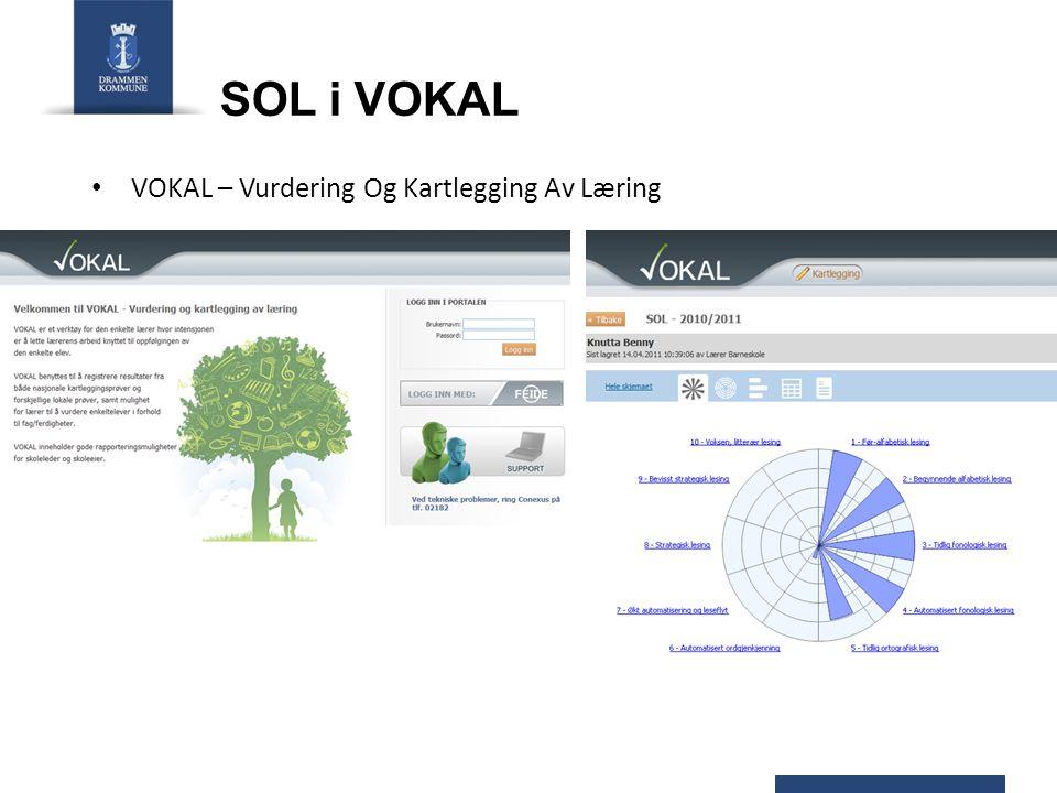 VOKAL – Vurdering Og Kartlegging Av Læring