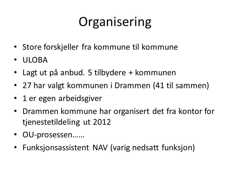 Organisering Store forskjeller fra kommune til kommune ULOBA