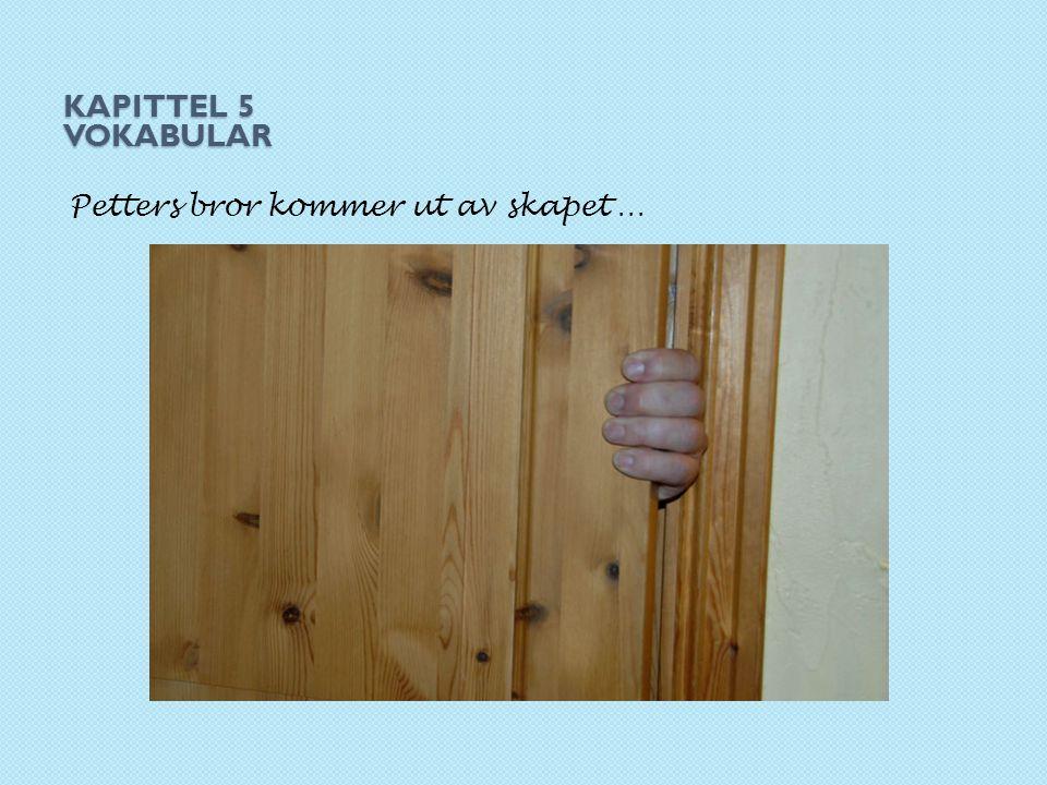 Kapittel 5 Vokabular Petters bror kommer ut av skapet …