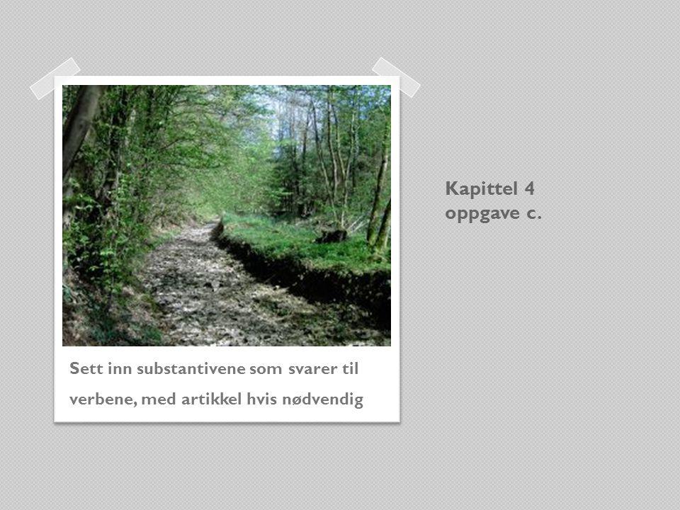 Kapittel 4 oppgave c. Sett inn substantivene som svarer til