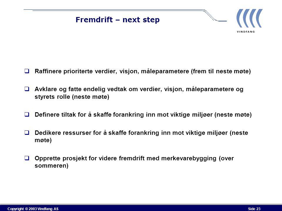 Fremdrift – next step Raffinere prioriterte verdier, visjon, måleparametere (frem til neste møte)