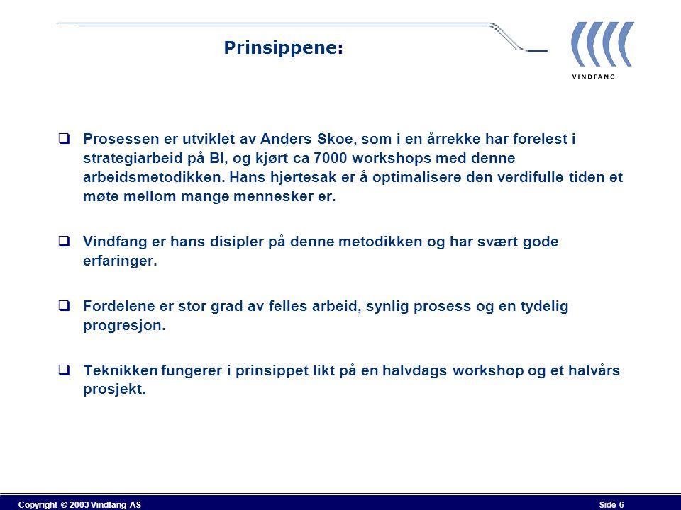 Prinsippene: