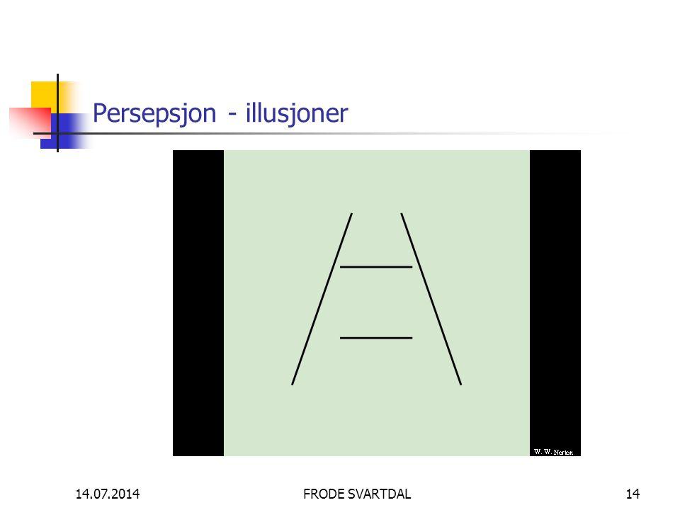 Persepsjon - illusjoner