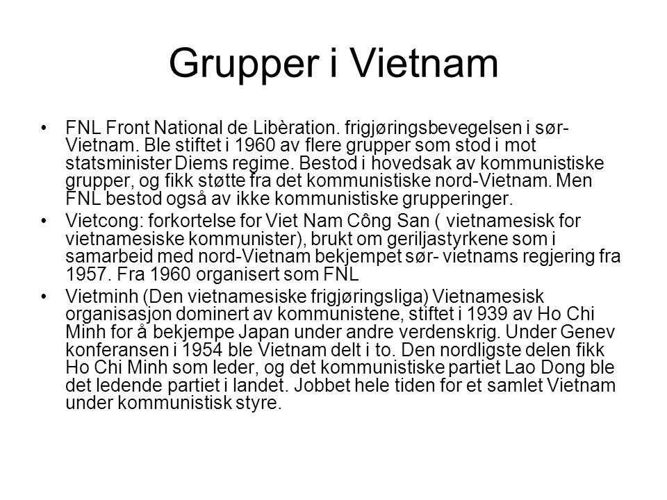 Grupper i Vietnam