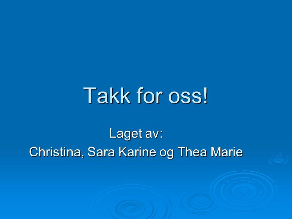 Laget av: Christina, Sara Karine og Thea Marie