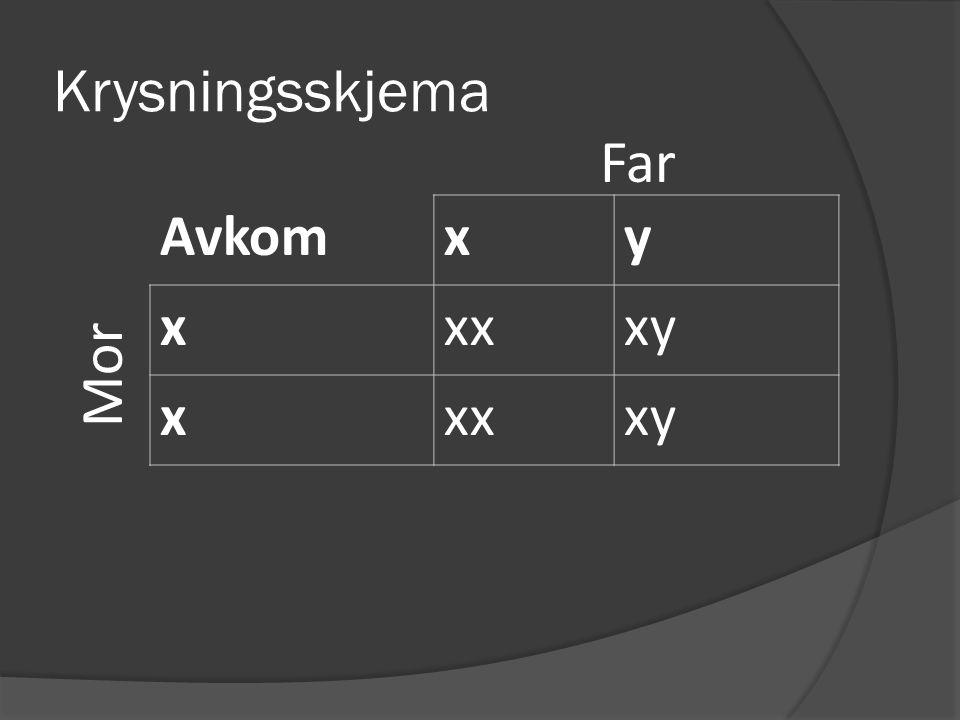 Krysningsskjema Far Avkom x y xx xy Mor