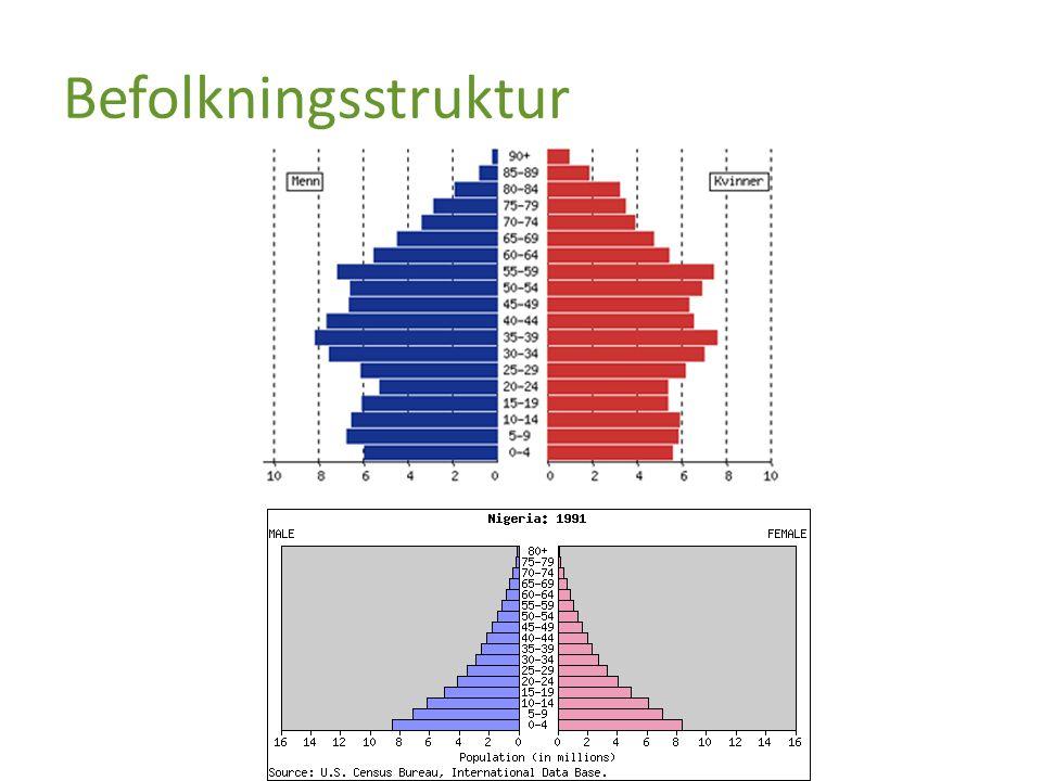 Befolkningsstruktur