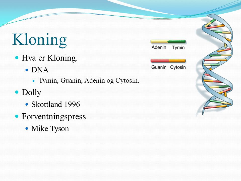 Kloning Hva er Kloning. Dolly Forventningspress DNA Skottland 1996