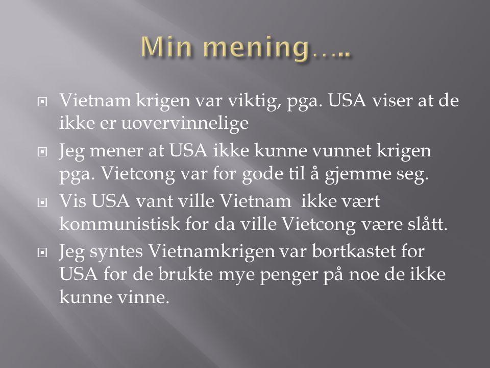 Min mening….. Vietnam krigen var viktig, pga. USA viser at de ikke er uovervinnelige.