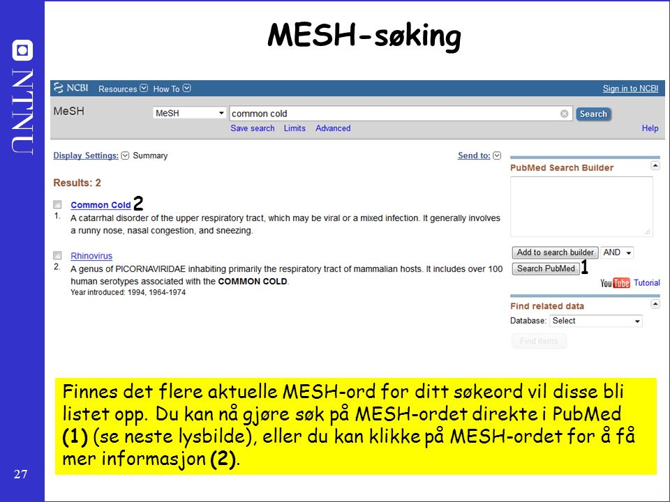 MESH-søking 2. 1.