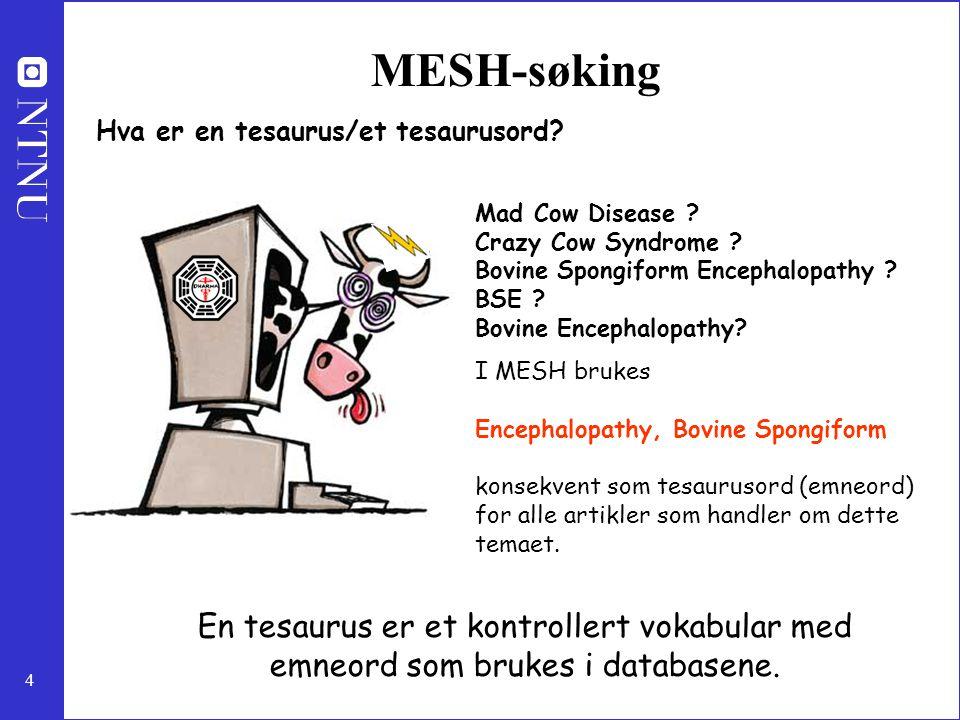 MESH-søking Hva er en tesaurus/et tesaurusord