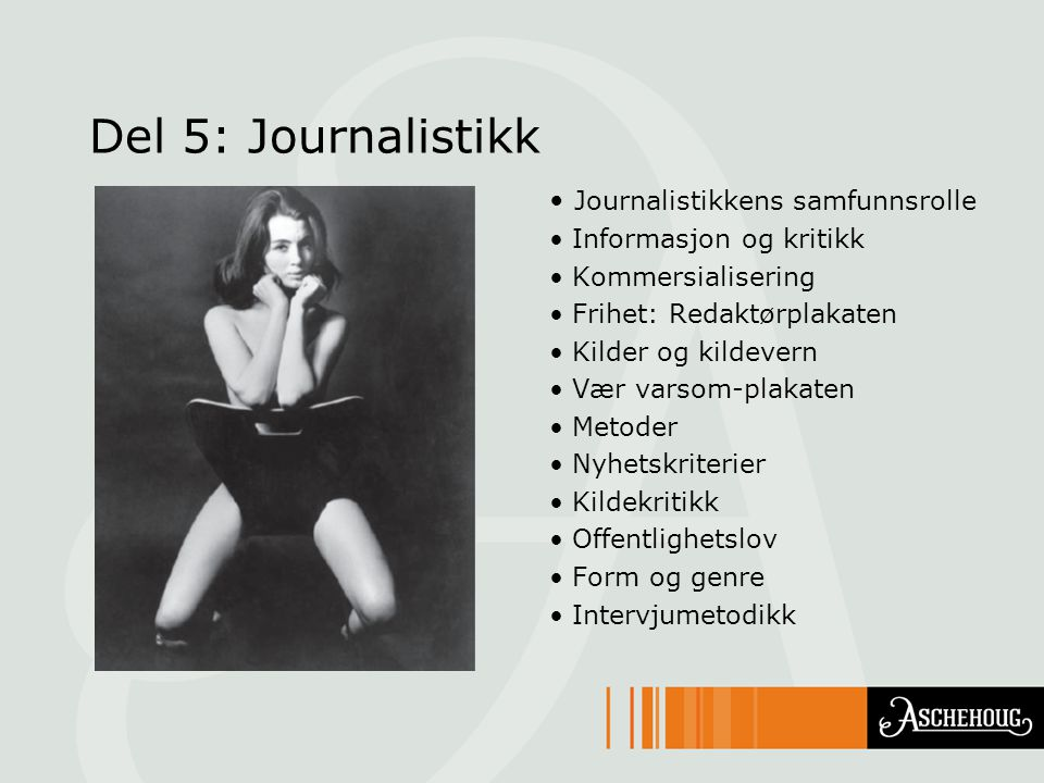 Del 5: Journalistikk Journalistikkens samfunnsrolle